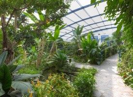 Mariposario Tropical