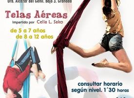 Curso «Telas aéreas» (14-15)