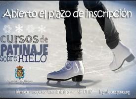 Cursos de iniciación al patinaje sobre hielo (14-15)