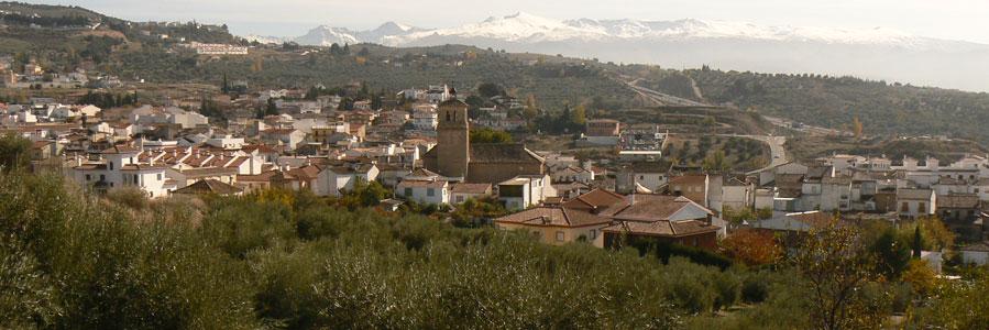 Foto: aceitedealfacar.com
