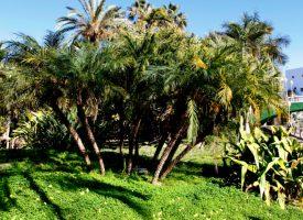 Parque botánico-arqueológico El Majuelo de Almuñécar