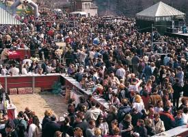 Fiesta de San Cecilio 2015