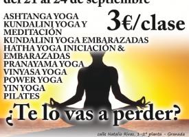 Hatha Yoga para embarazadas (15-16)
