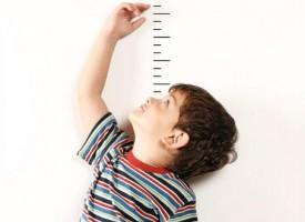 Un poco de teoría sobre el desarrollo infantil