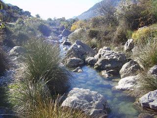 rio castril8