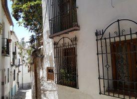 «Caminando por el barrio».  María del Carmen Gutierrez