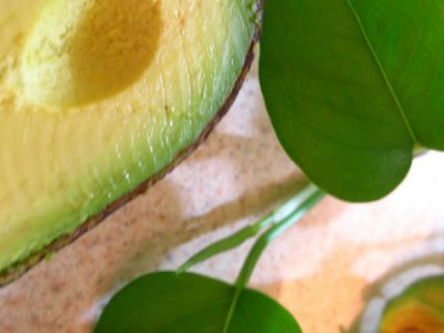 El aguacate. Curiosidades y usos en la cocina
