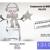 WinterCamp en Igloo Granada (2017)